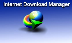 How to download file from website using  IDM