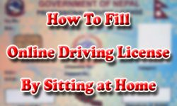 How To Fill Online Driving License Form in Nepal